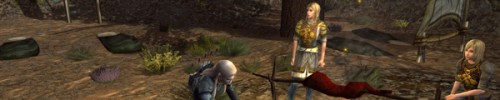 A helpful post to lotro players
