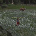 Medium quality screenshot of the game Lord of the Rings Online