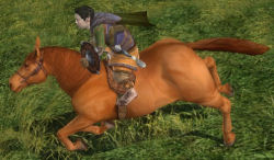 My minstrel is now at level 35 with a new pony